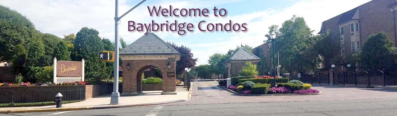 Baybridge Condos Beautiful Condos In Bayside For Sale